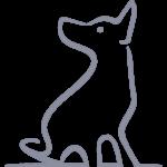 Fledermausohrenhund